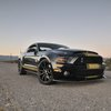 The 2013 Shelby GT500 Super Snake 50th Anniversary