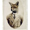 Young Mr Fox - print