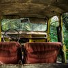 Photos of Abandoned Cars Taken from the Back Seat