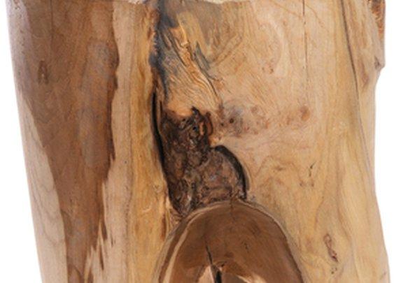 Tree trunk stool