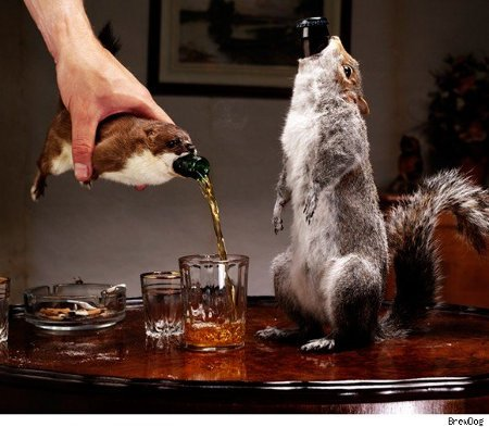 Taxidermied Animal Koozies |