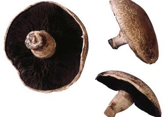 How To Cook Mushrooms As Hamburger Buns   LIVESTRONG.COM