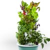 Tower Garden by Juice Plus+