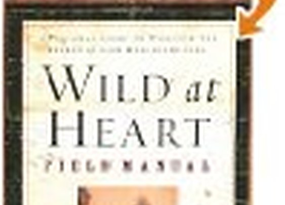 Wild at Heart Revised & Updated: Discovering the Secret of a Man's Soul