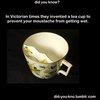 Mustache saving  Victorian tea cup.