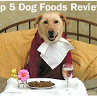 The Top 5 Dog Foods: Dog Food Reviews 2012