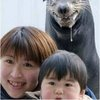 Sea Lion from Hell