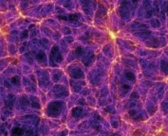 Dark matter underpinnings of cosmic web found
