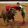 Gored Bullfighter returns to the ring
