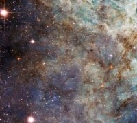NASA – Hubble's Close Encounter with the Tarantula