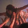 GORILLA VS. BEAR II Festival