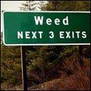5 Pro-Marijuana Arguments That Aren't Helping | Cracked.com