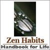 » Handbook for Life: 52 Tips for Happiness and Productivity :zenhabits
