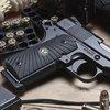 Wilson Combat | Ultralight Carry Compact