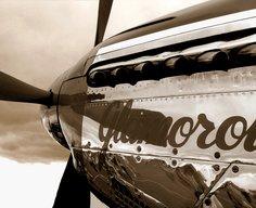 P51D | Flickr - Photo Sharing!
