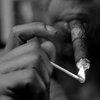 Martinez Cigars on Devour.com