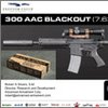 300 AAC BLACKOUT (300BLK)
