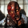 THE DEAD WAR SERIES: Check out 9 pics from Walking Dead's S3 premiere
