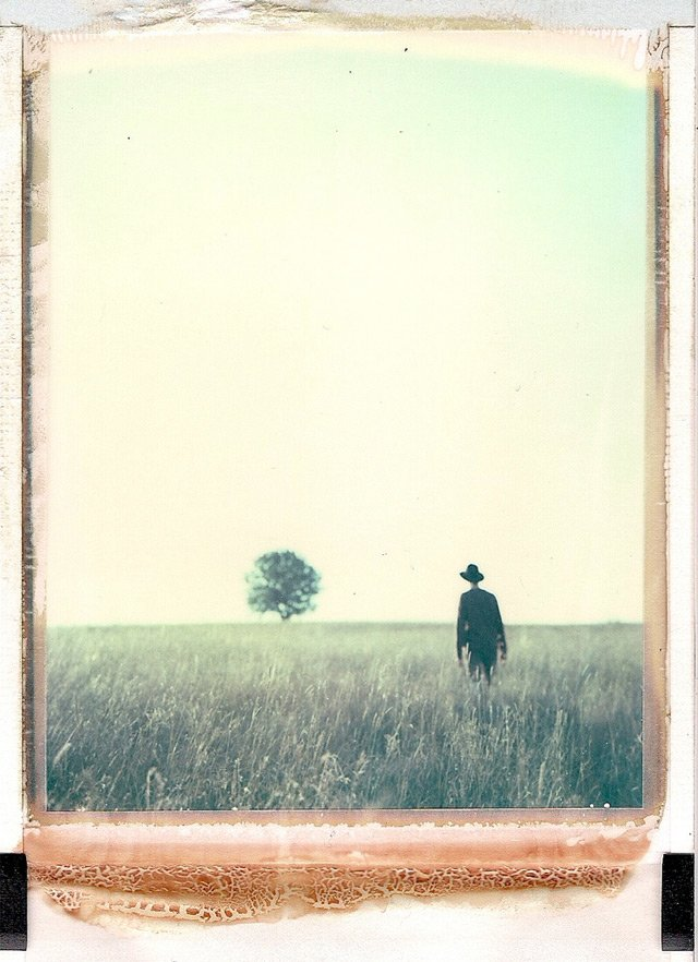 The Mysterious Polaroids of Bastian Kalous | Colossal