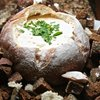 Beer cheese dip in a bread bowl