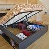 Storage Area under the Bed