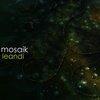 Mosaik | Leandi