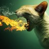 Dragon Cat and Other Awesome Photo Manipulations of Animals - My Modern Metropolis
