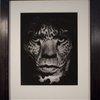 Albert Watson – Mick Jagger, Los Angeles, 1992 at 1stdibs