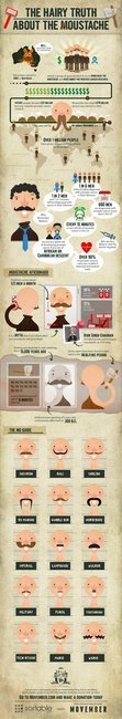 The Hairy Truth About The Moustache (Movember Infographic) - Gentlemint
