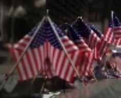 Watching: Veteran's Day tribute to fallen heroes