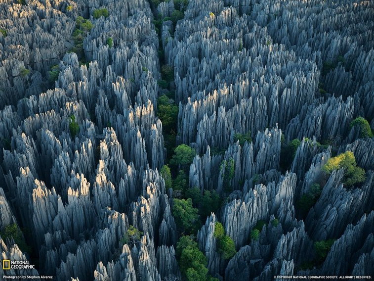 A city of limestone towers rises in western Madagascar.