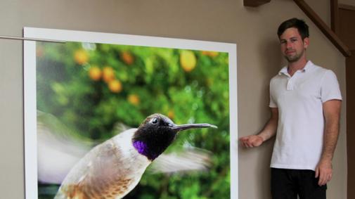 Bird watching goes wireless with Bird Photo Booth