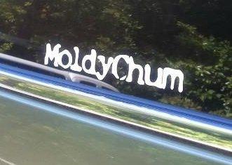 Moldy Chum