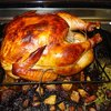 Hungry for Quality: Thanksgiving Turkey and Your USP | Nifty Marketing