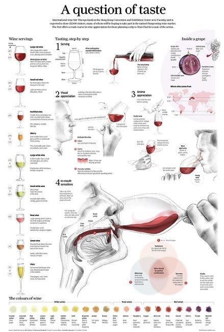 A Question of Taste (Catando Vino)