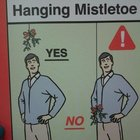 Hanging Mistletoe- Do and Don't