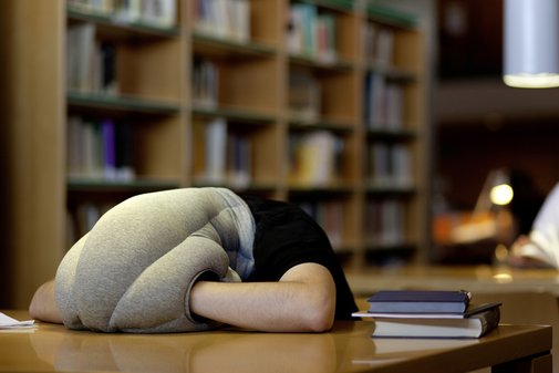 Ostrich Pillow | That Should Be Mine