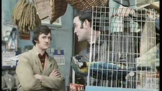 Monty Python - The Parrot Sketch and The Lumberjack Song - the movie versions - HQ - YouTube