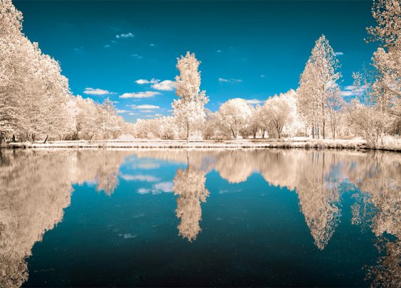 Infrared Photography of David Keochkerian