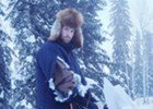 FAIRBANKS, Alaska: Wolf attacks Tok trapper riding on snowmachine | State News | ADN.com