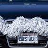 Wisdom Grey Carstache | Carstache® Car Mustaches