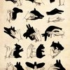 Shadow Puppet Guide