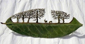 Intricate Leaf Art by Lorenzo Duran