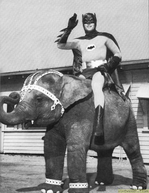 And then there's Batman riding an elephant.