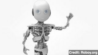 Roboy, The Humanoid Robotic Boy, Will Be 'Born' in 2013 - YouTube