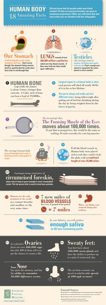 18 Amazing Facts About the Human Body - Infographic