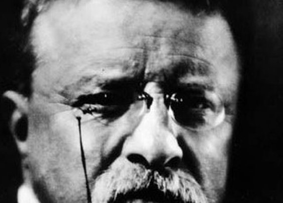 Theodore Roosevelt Motivational Posters   The Art of Manliness