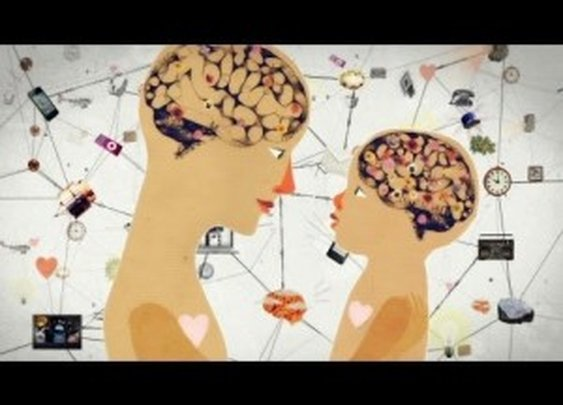 Brain Power: From Neurons to Networks