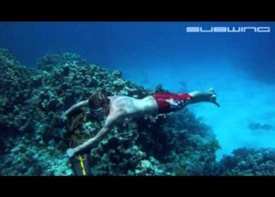 Subwing: Flying Underwater