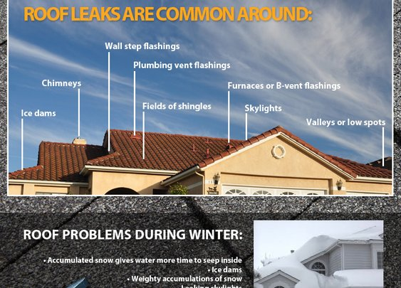 A Guide to How to Repair a Leaky Roof (infographic)